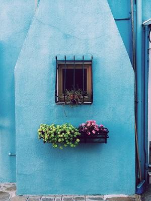 Blumenpracht zum Selbermachen Bild oben