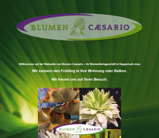 ᐅ Blumen Caesario Rapperswil Kreation Blumen Rapperswil Jona 2019